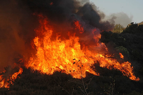 Orange County forest fire.  Photo by Miro-Foto