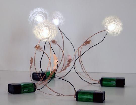Dandelight LED Light by Drift Designers_540