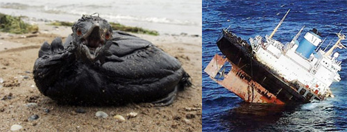oil-spills.jpg