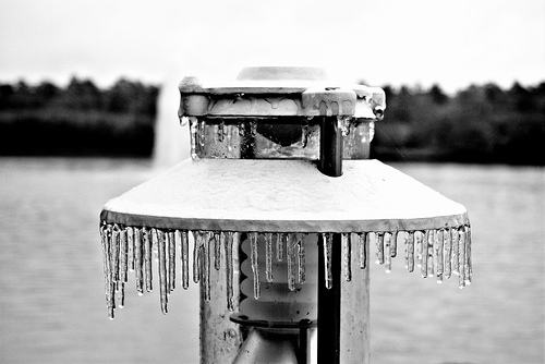 Ice in Texas during the January storm that created an icy mess up and down the east coast. Photo by jonmatthew photography