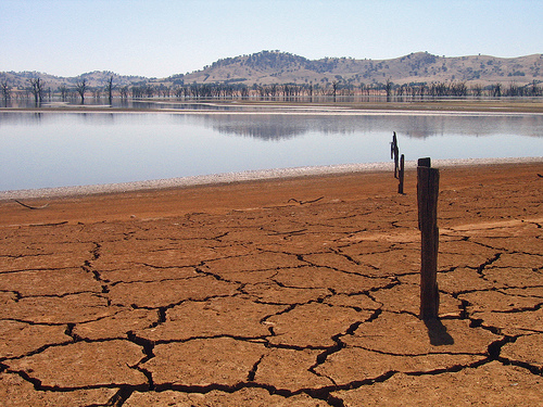 Victorian side of Lake Hume during 2007 drought. Photo by suburban bloke